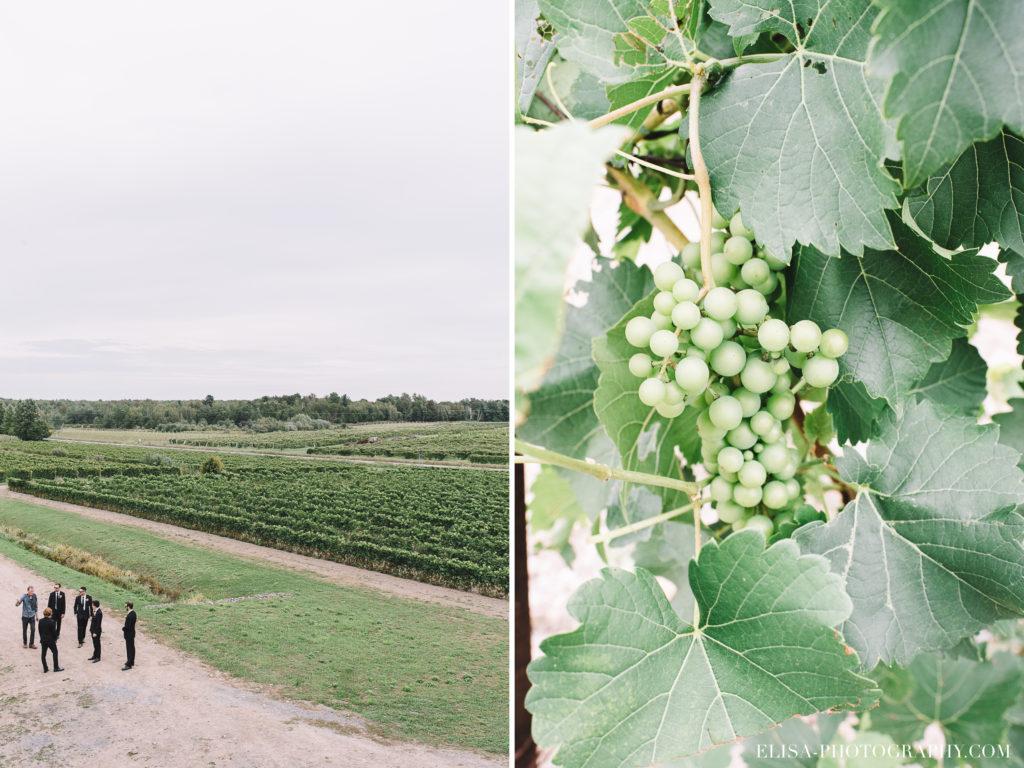 mariage-garcons-honneur-vignoble-vintage-raisins-orpailleur-photo