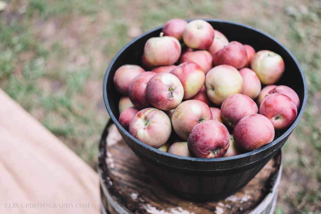 mariage-ceremonie-ceremony-pommes-apple-domaine-verger-dunham-photo-6687