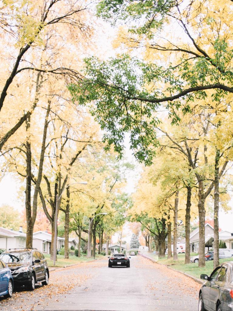 mariage-quebec-baie-de-beauport-automne-lamborghini-auto-luxe-photo-9065