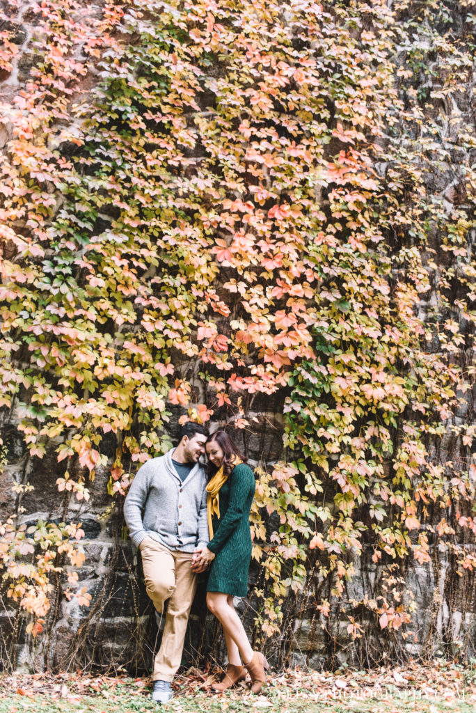 fiancailles-engagement-parc-moulins-automne-fall-photo-1479