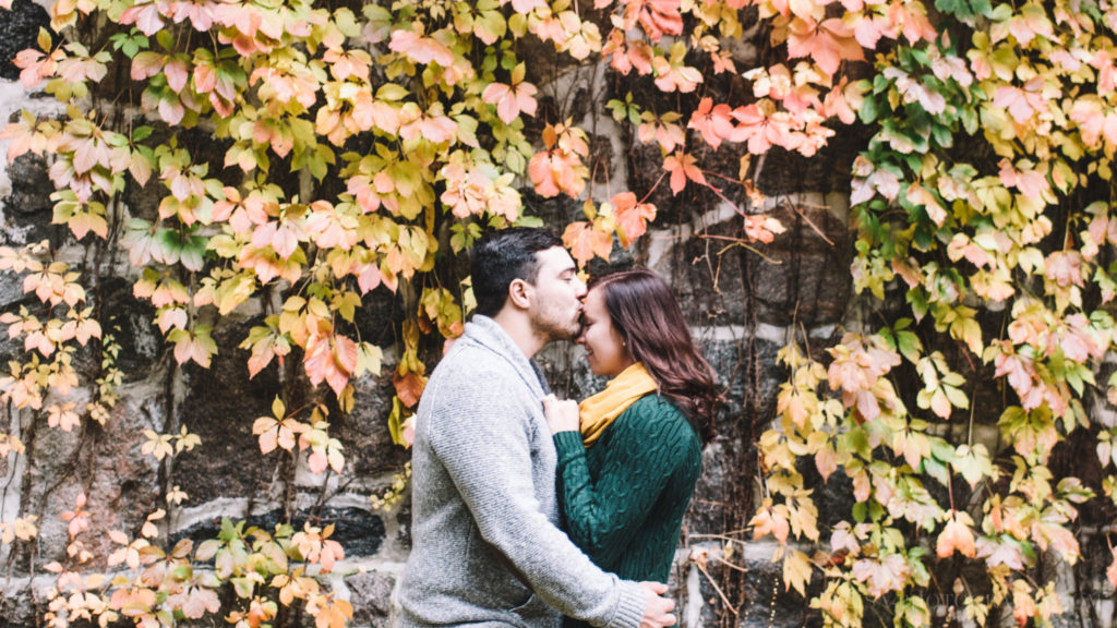fiancailles-engagement-parc-moulins-automne-fall-photo-1487