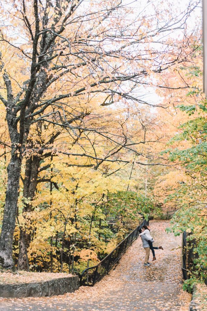 fiancailles-engagement-parc-moulins-automne-fall-photo-1602