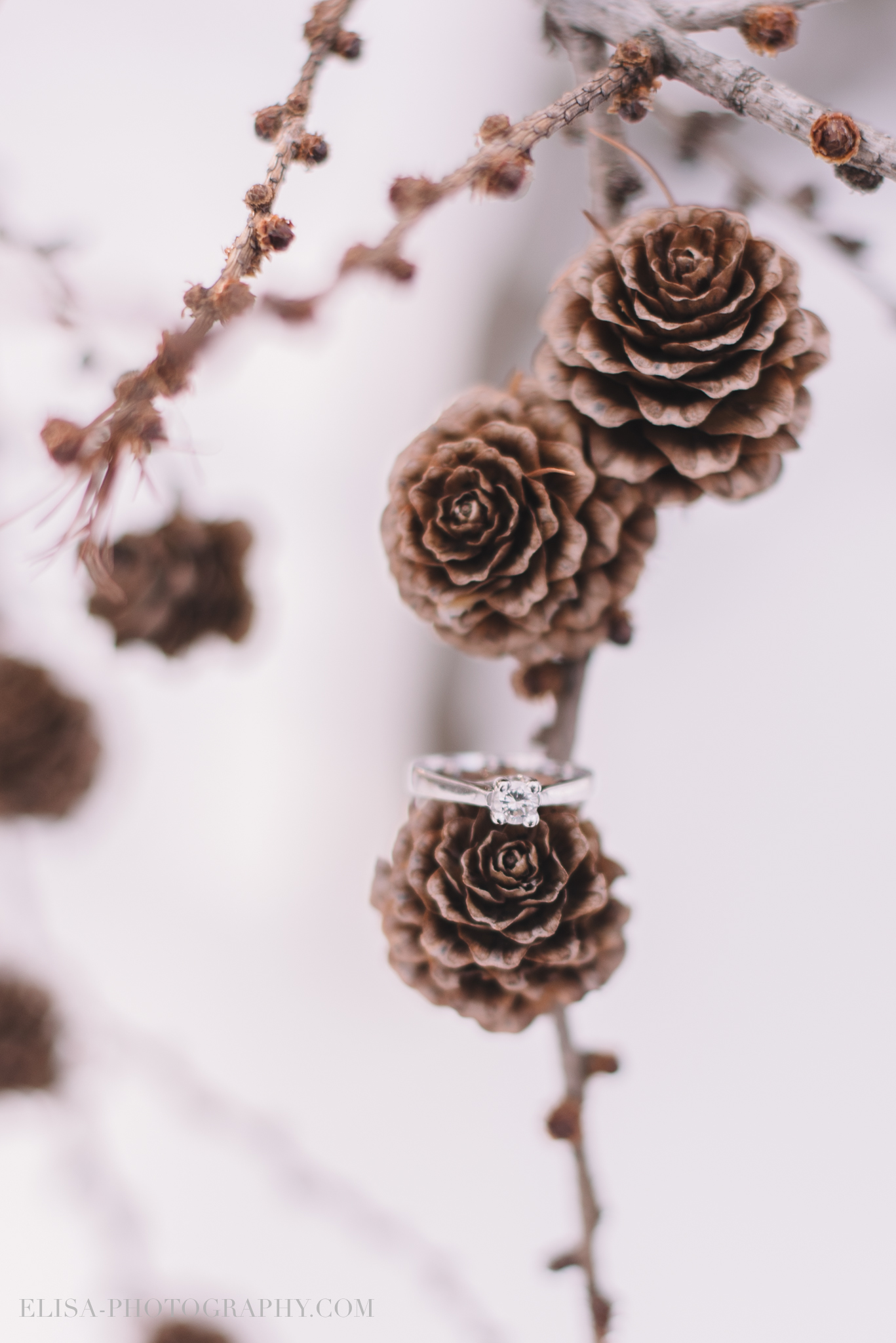 bague mariage cocotte hiver winter pine cone ring shot photo