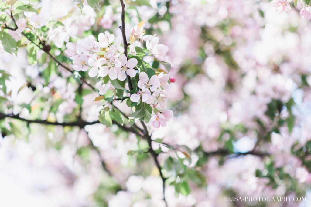 fiancailles-printemps-fleurs-mariage-terrebonne-photo