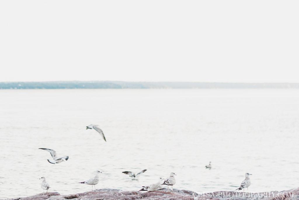 fiançailles plage grève eau fleuve ile orléans photos 9726 1024x684 - Fiançailles à l'île d'Orléans: Claudia + Jack