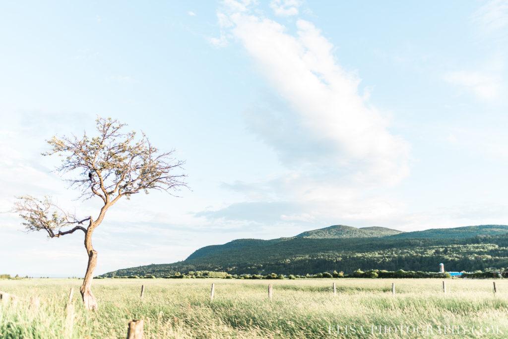 mariage champs montagnes rustique le germain charlevoix photo 9915 1024x684 - Mariage en toute élégance à l'hôtel Le Germain de Charlevoix: Véronique & Eric